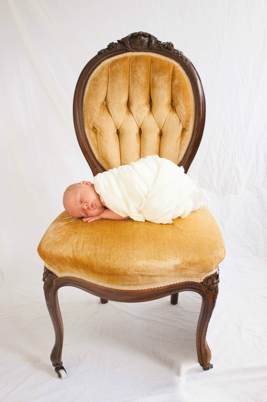 Newborn Photography Tampa
