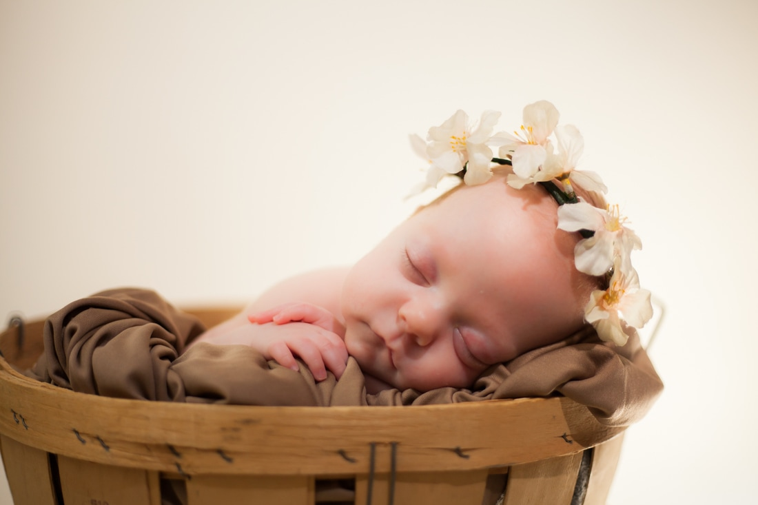 newborn baby with flower crown in tampa