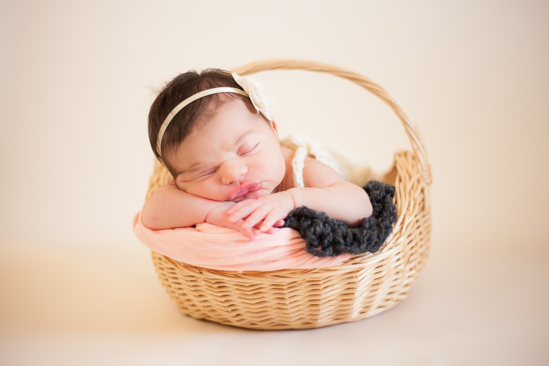 Newborn girl in basket in tampa fl