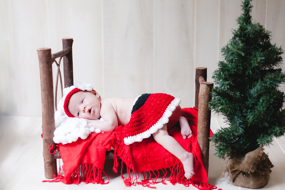 Christmas photo of newborn baby girl wearing santa skirt and lying on a log bed