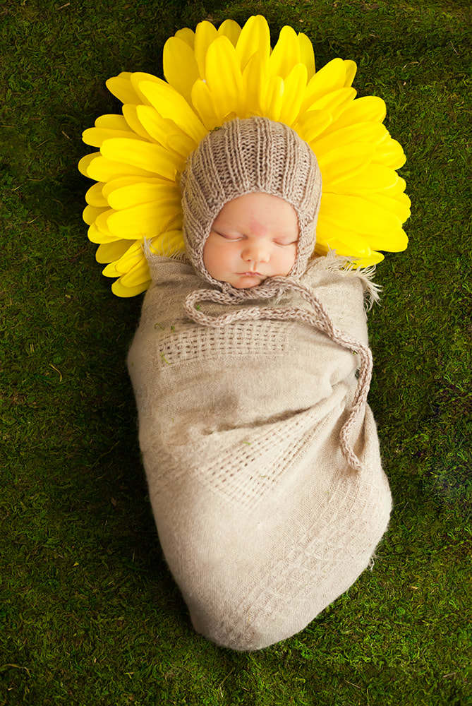 newborn baby girl swaddled and lying on a yellow sunflower